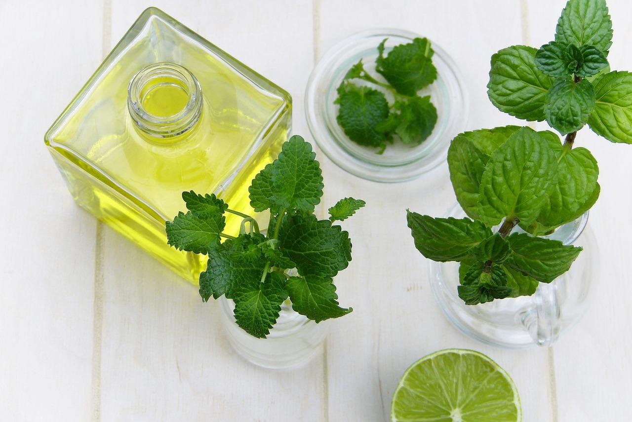 5 здравословни факта за семената от чиа-Нутрима-бг-1
