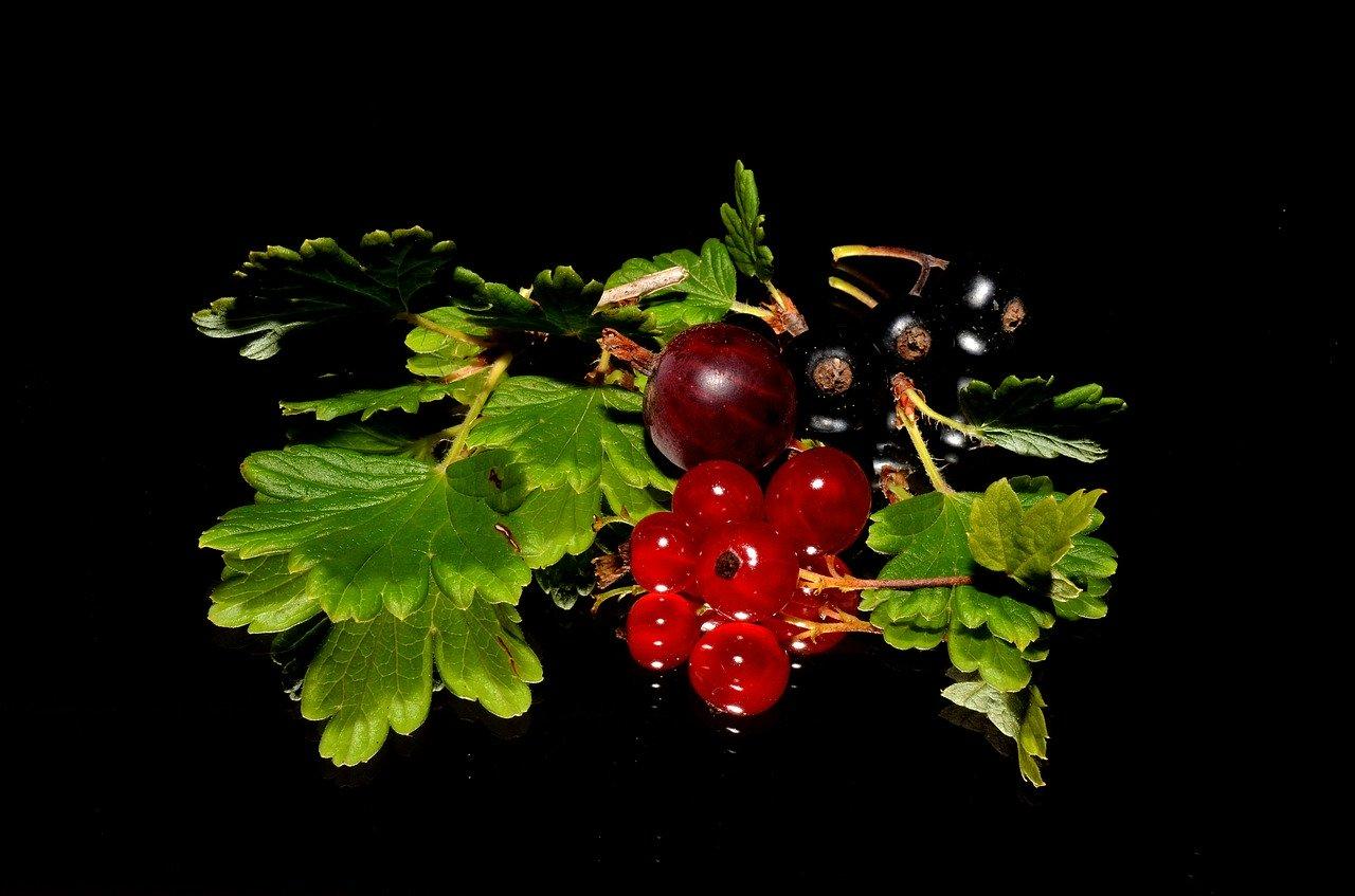 Топ 10 на храните с най-високо съдържание на витамин С-Нутрима-бг-2