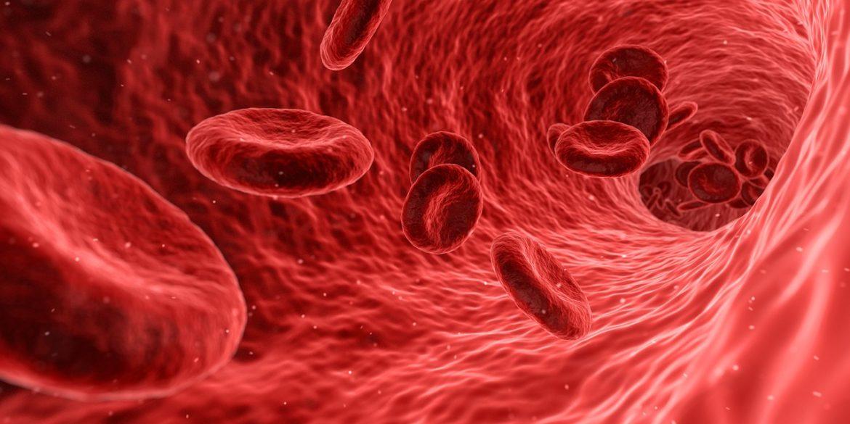 15 храни, които ще Ви помогнат в борбата срещу анемия