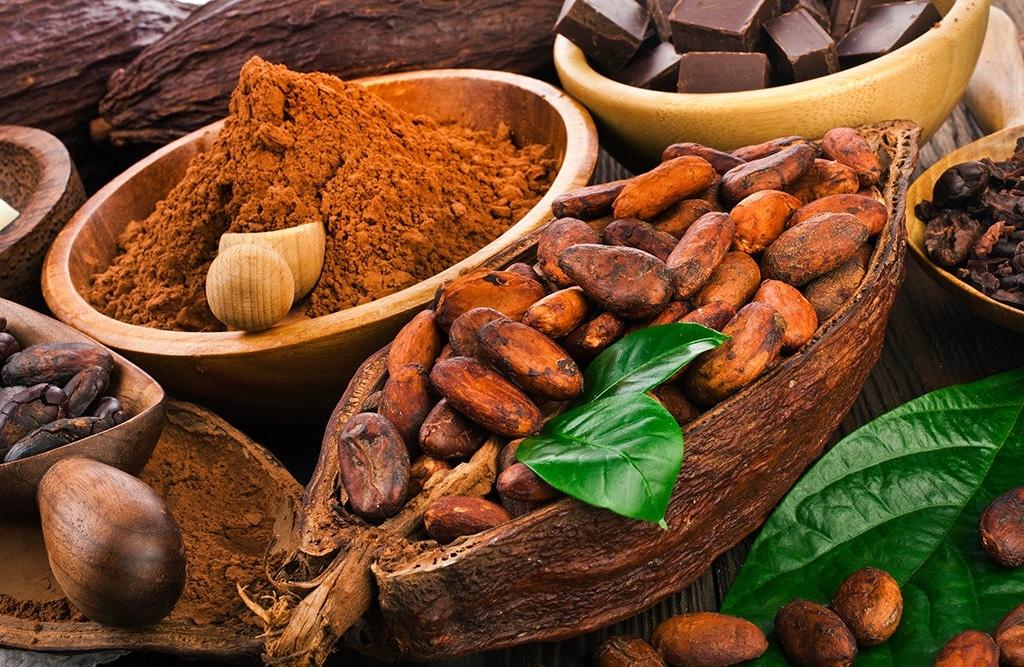 Какви са здравословните ползи от приема на какао Нутрима бг