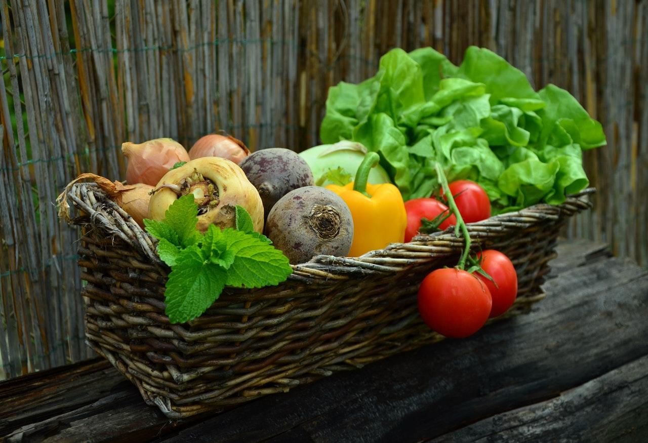 Какво са пребиотиците - функции, ползи, храни-Нутрима-бг-1