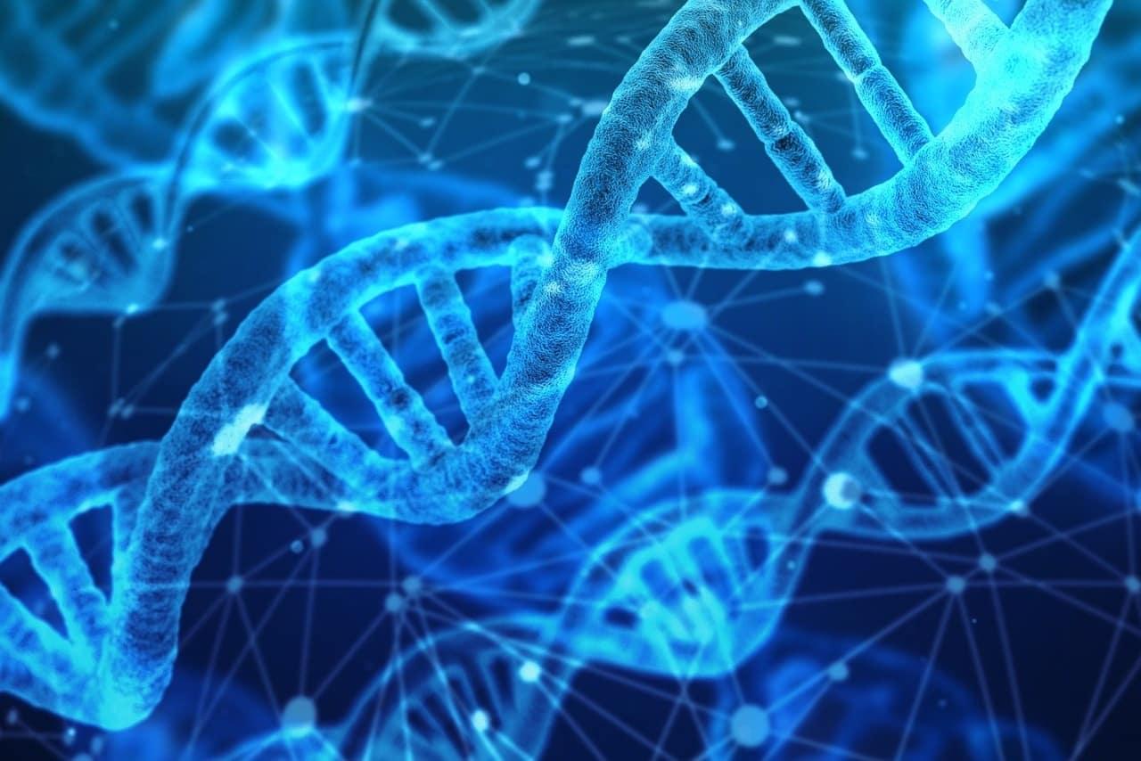 Какво всъщност представляват белтъчините - Нутрима-бг-1