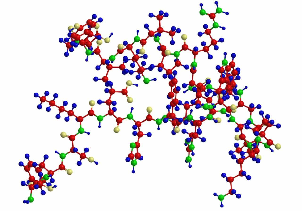 Какво всъщност представляват белтъчините - Нутрима-бг-2
