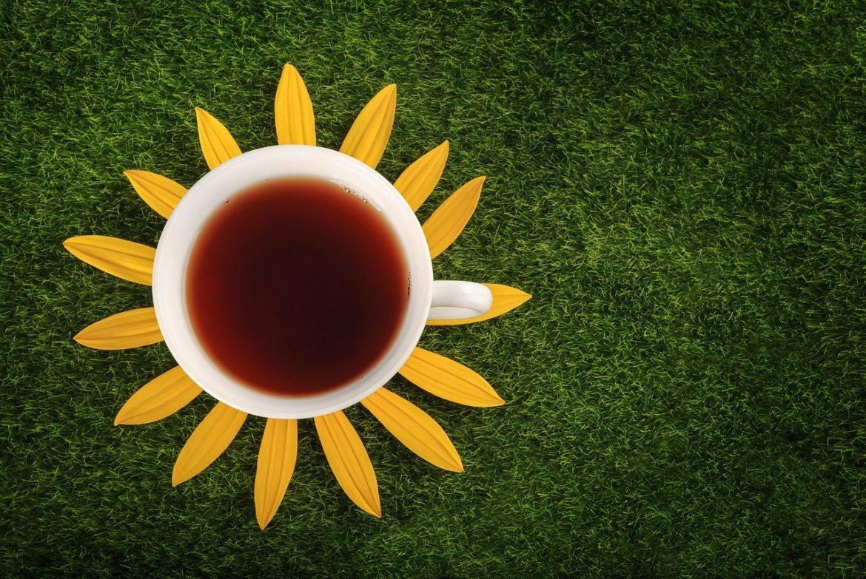 Топ 10 на най-ефикасните чайове за отслабване-Нутрима-бг