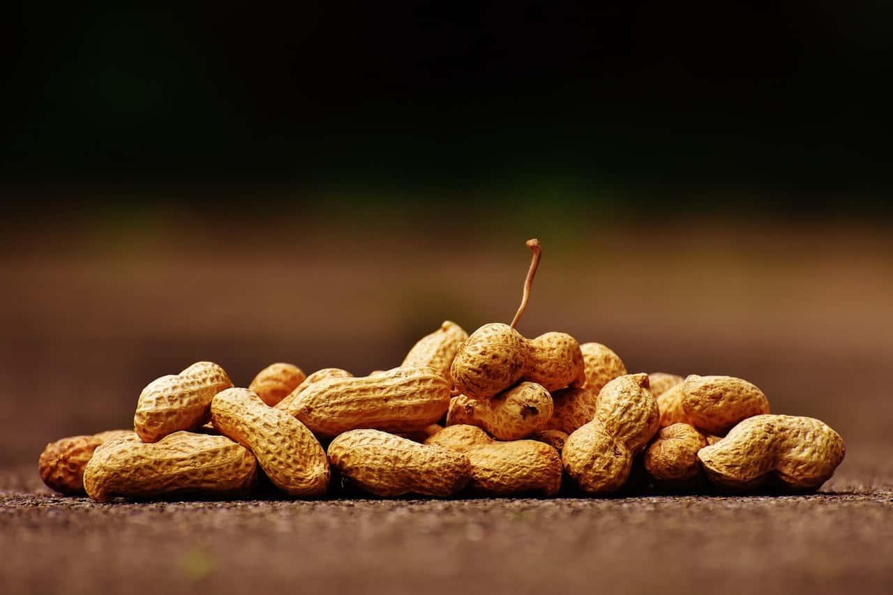 Кои са основните хранителни алергени-Нутрима-бг-6