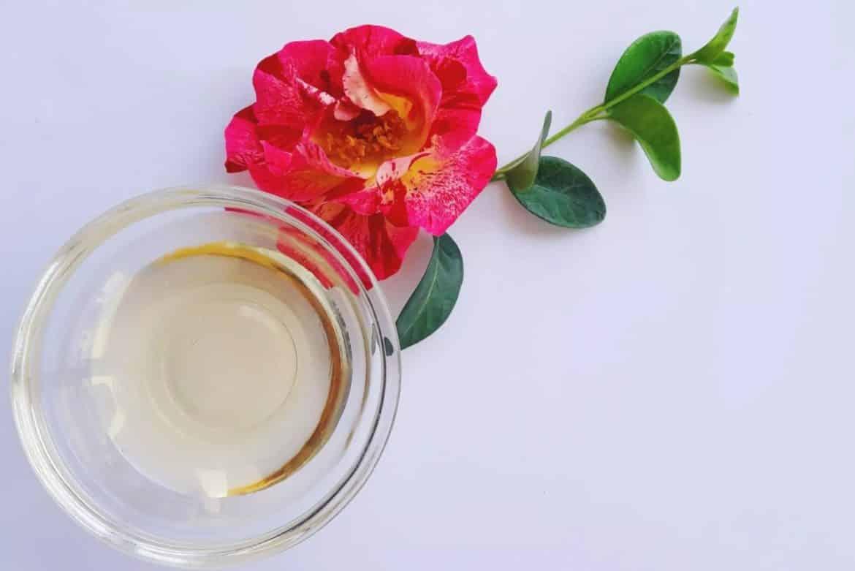 Маслото от камелия - здравословният дар на Изтока-Нутрима-бг