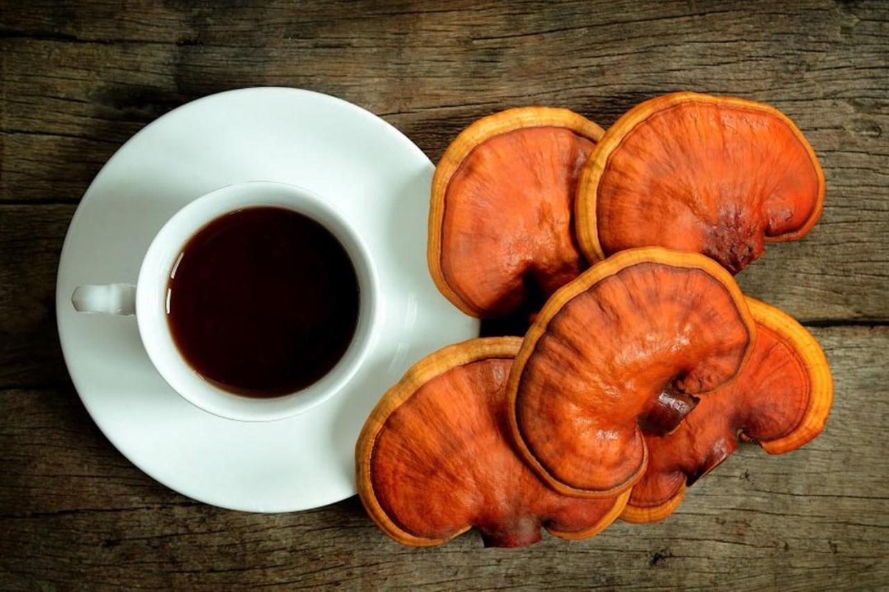 Всичко, което трябва да знаете за кафето от гъби-Нутрима-бг-1
