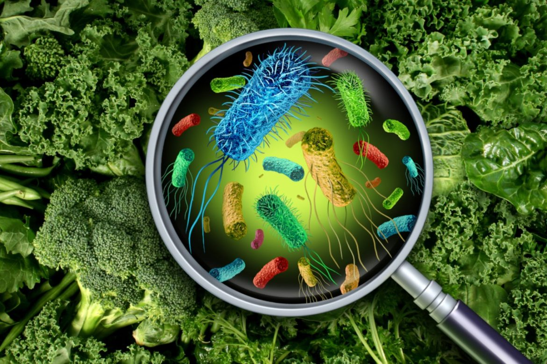 Как най-добре да се предпазим от хранителни отравяния - Нутрима-бг